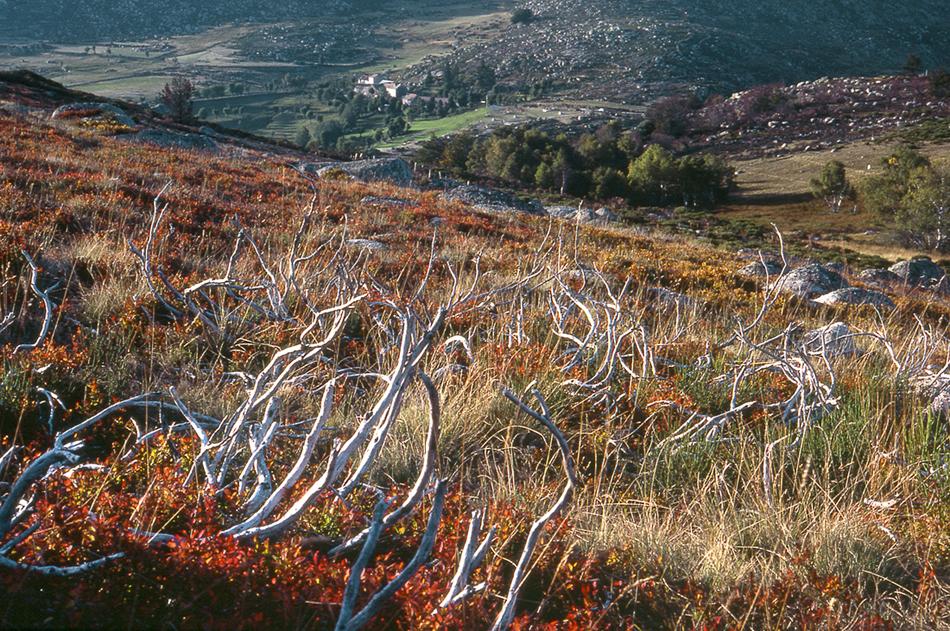 landscapes France 1978-1981