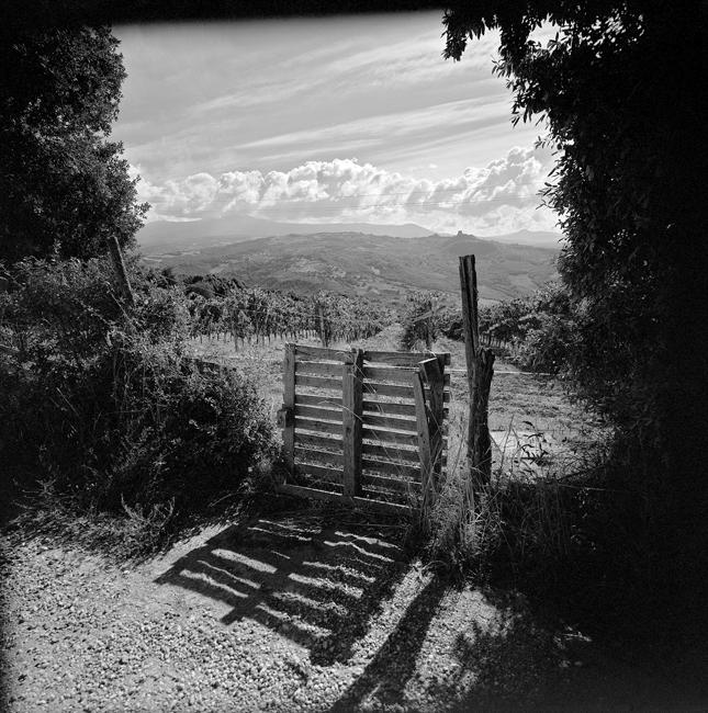 La barrière de bois, 2010